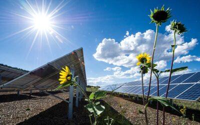 نیروگاههای تجدیدپذیر محدود به ظرفیت انشعاب
